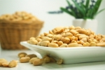 Oral Peanut Immunotherapy is One Step Closer to FDA Approval